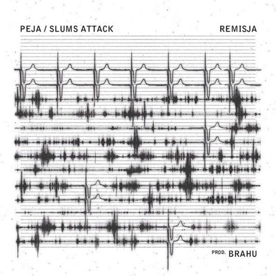 Peja Slums Attack - Remisja